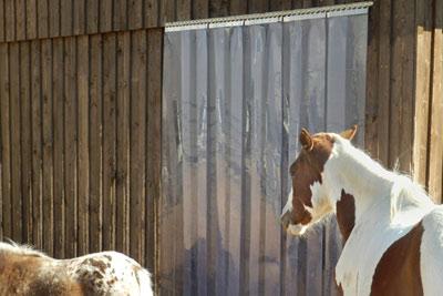 Lamellenvorhang für den Pferdestall